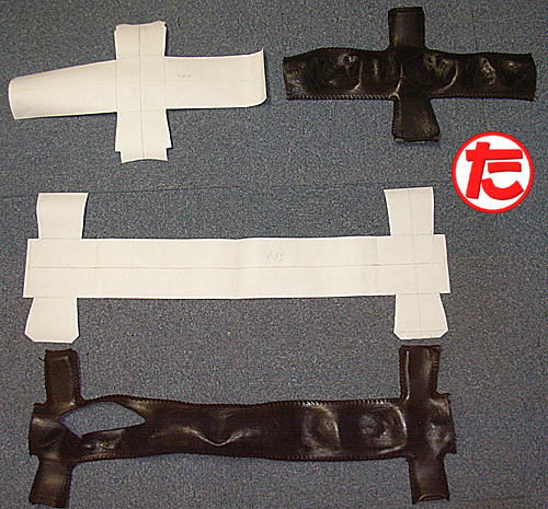 ZSTR-CG10.jpg